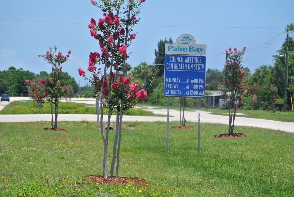 Median Landscaping with Signs