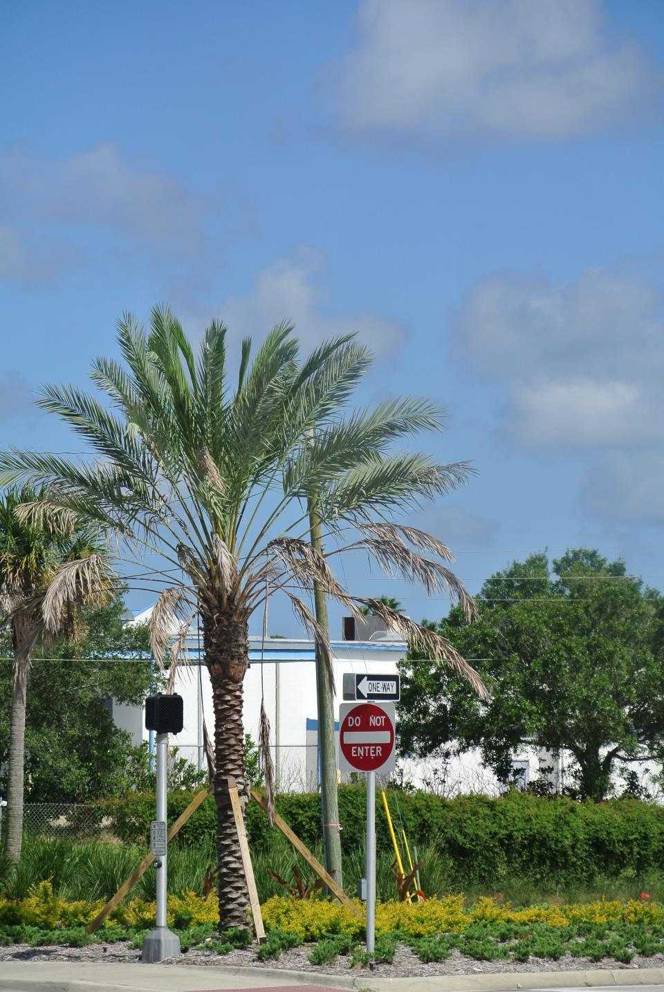 Palm Bay Road