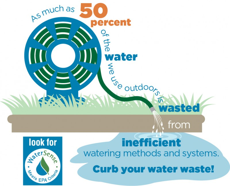 Water waster Infographic