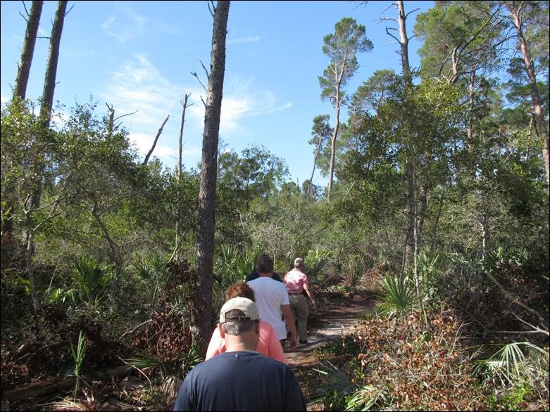 Ranger-Led Tour Through Turkey Creek Sanctuary
