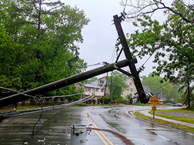 Down powerline in roadway